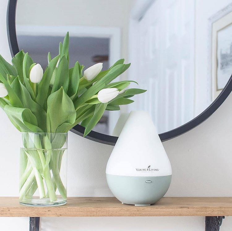 Dewdrop Diffuser   Cool Mist Humidifier   Night Light   Lia and Reese